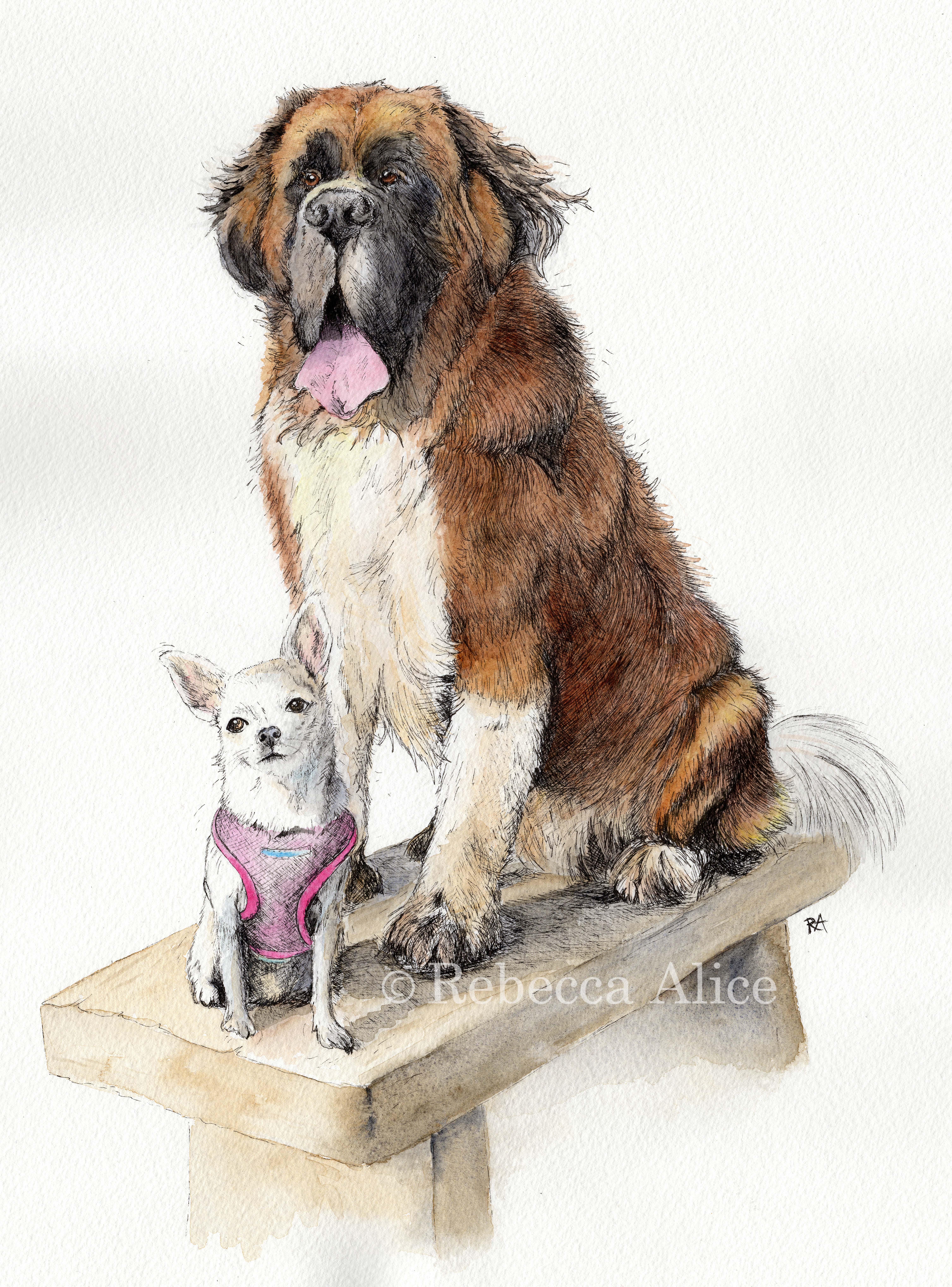 Maxi and Bambini
