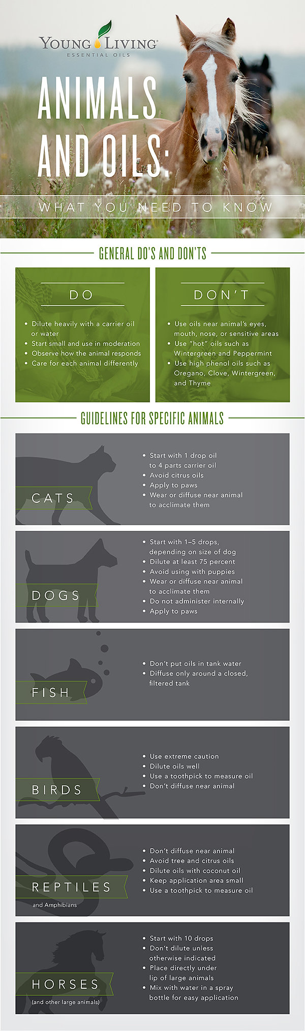 YoungLiving Essential Oils for Animals