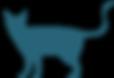 питомник сибирских кошек siberian cattery sale kitten