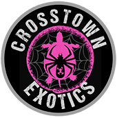 crosstown_exotics-removebg-preview.png