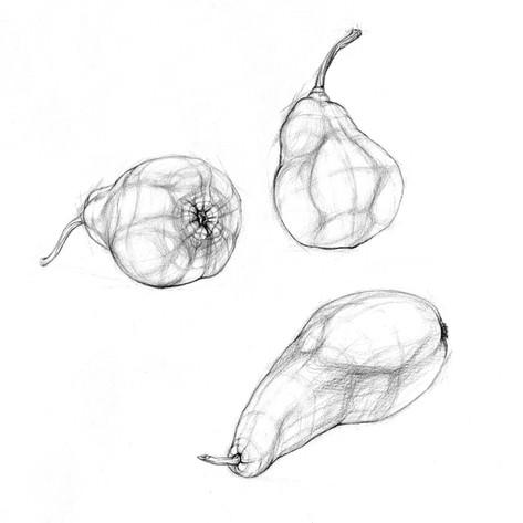 Birne_Lucy_Kägi_Illustration