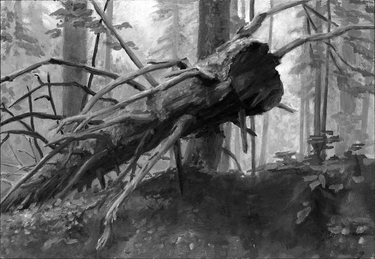 """""""Fallen tree"""", Langwies GR, plein air oil painting"""