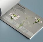 Botanical Infographic