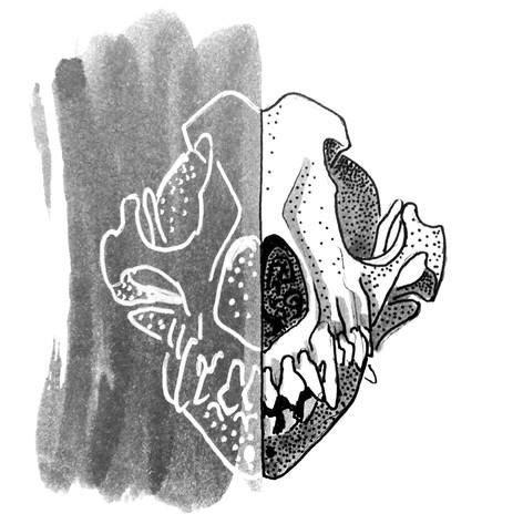 Inktober_Lucy_Kägi_Illustration