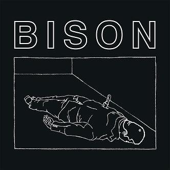 Bison - One Thousand Neeldes LP