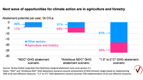 Next wave of opportunities for climate action are in agriculture and forestry