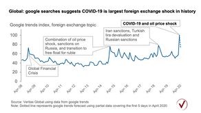 "Spike in ""foreign exchange"" google search after COVID"