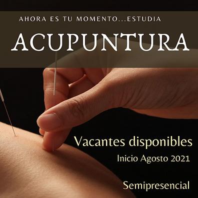 Copia de estudia acupuntura (2).png