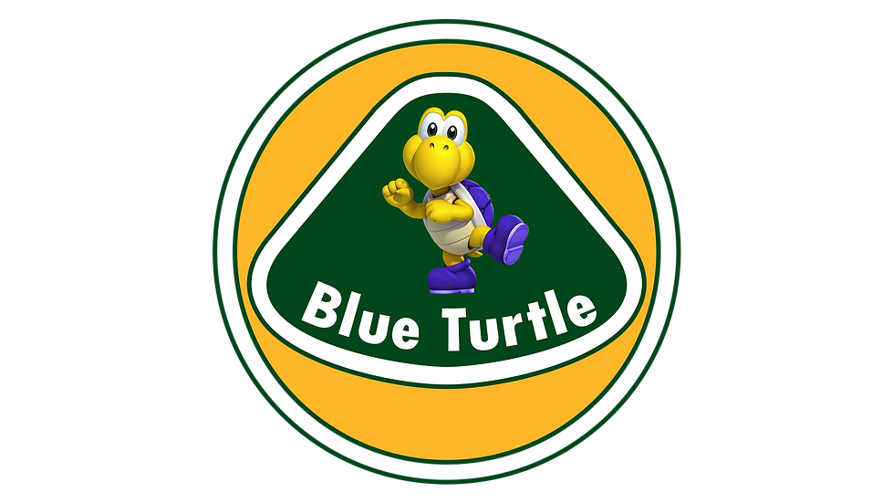 Blue Turtle Racing - BTR PKL Paulista Kart League