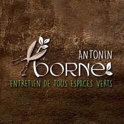 BORNE-LOGO