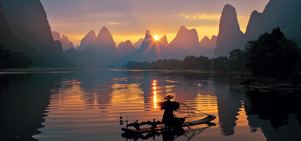 Commorant fishing.jpg