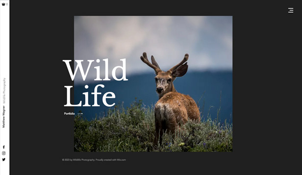 Fotografie website templates – Wildlife Photography