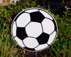 Soccer Ball Swag