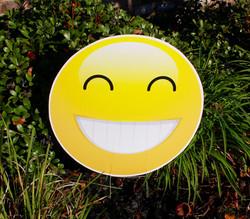Smiley Emoji Swag