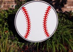 Baseball Fan Swag