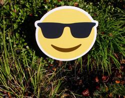 Sunglasses Emoji Swag