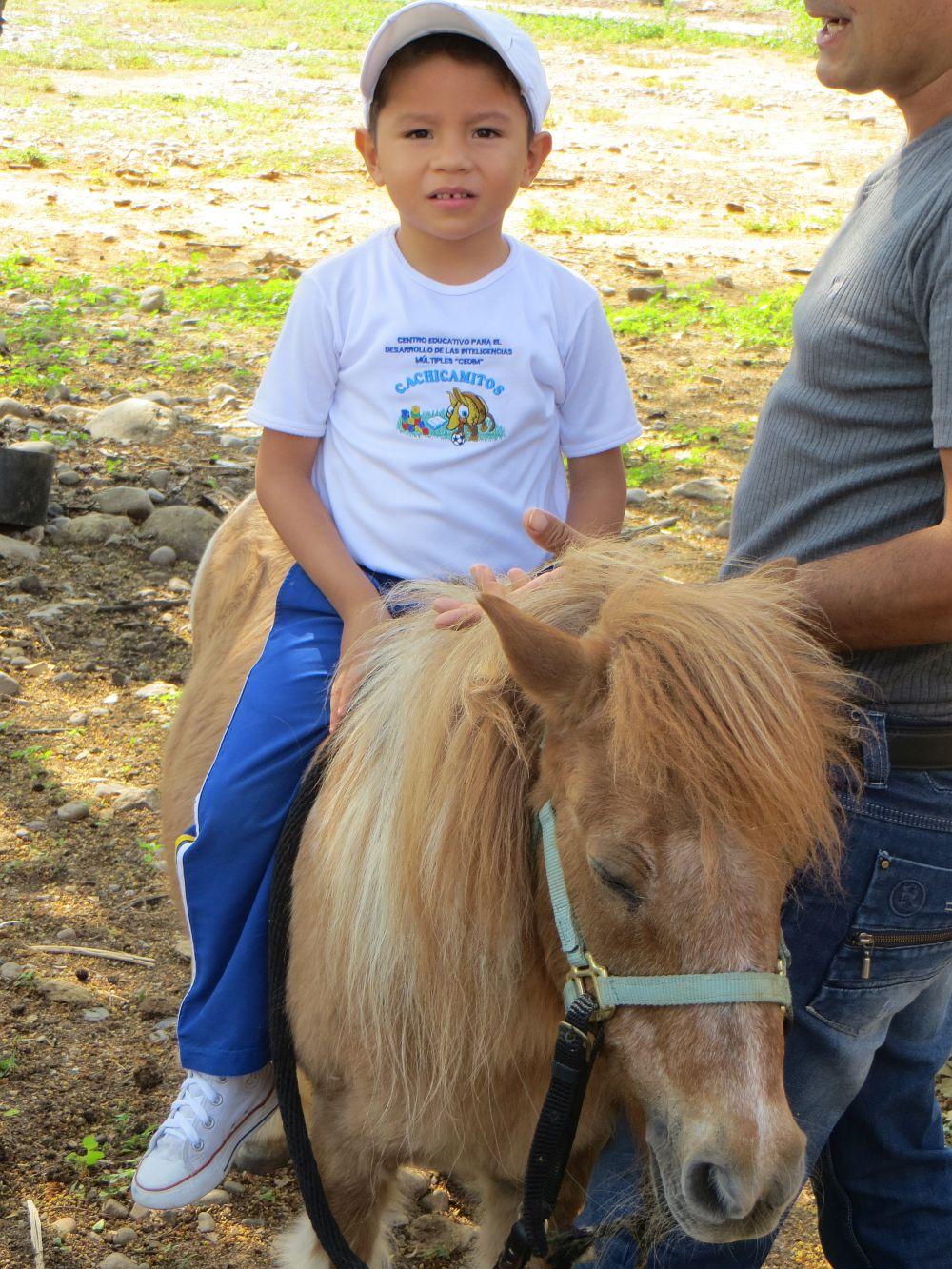 Pony 2