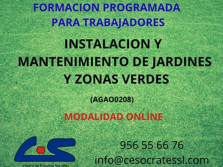 INSTALACION Y MANTENIMIENTO DE JARDINES Y ZONAS VERDES