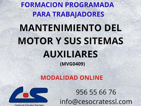 MANTENIMIENTO DEL MOTOR Y SUS SISTEMAS AUXILIARES (TMVG0409)