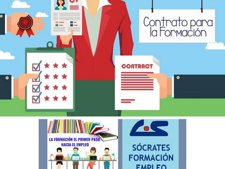 Proyectos Formativos en la formación en alternancia con el empleo: estructura y características