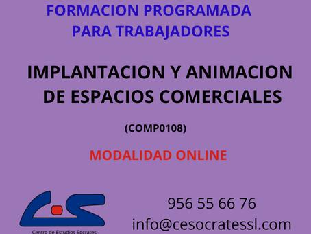 IMPLANTACION Y ANIMACION DE ESPACIOS COMERCIALES
