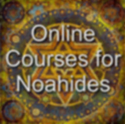 meet the orthodox tour