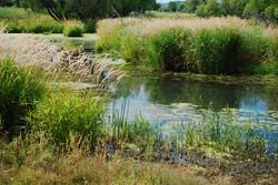 Colorado Property w/ Water