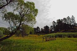 Farmland in Elizabeth, CO