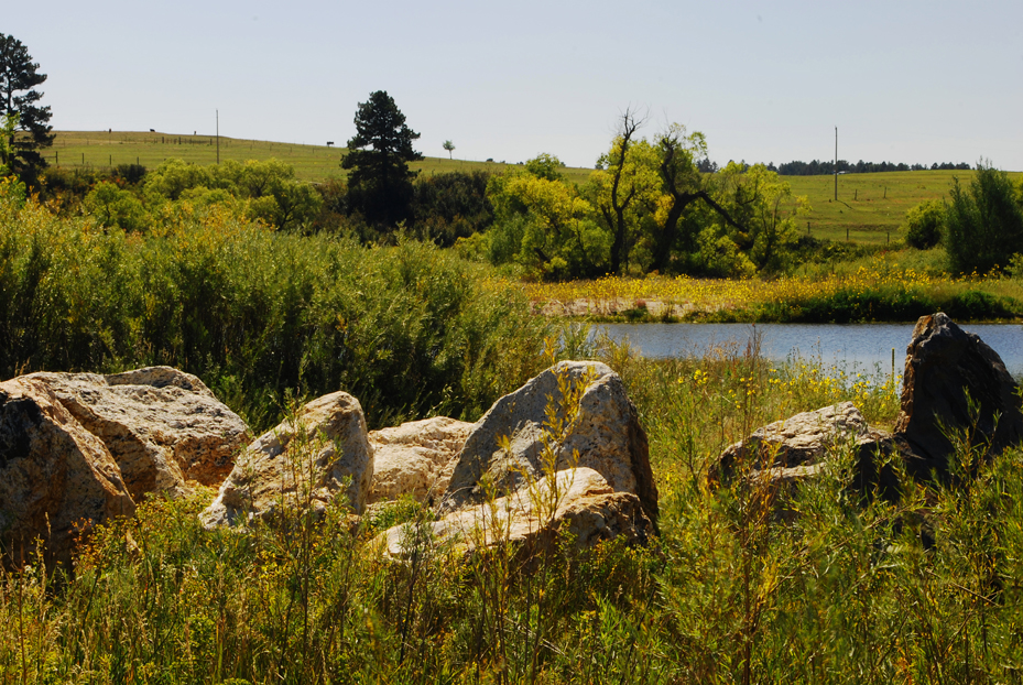Meadow land in Colorado for Sale