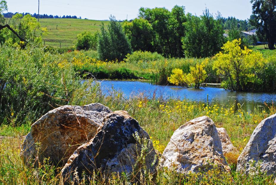 Beautiful Acreage in Colorado