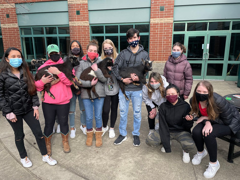 The Pawfect Club for Students: Animal Club welcomes anyone passionate about pets
