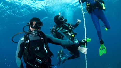 PADI Image of Divers Descending
