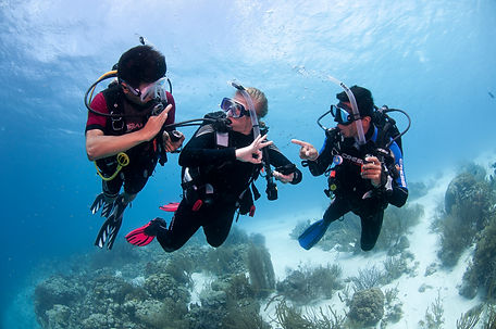 BonaireOW0213__0233.jpg