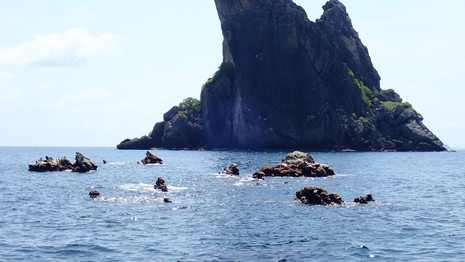 Hin Pae Pinnacle dive site