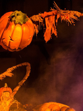 Halloween Horror Marathon!