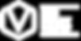 logo.vie.wit-01.png