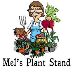 Mel's Plant Stand