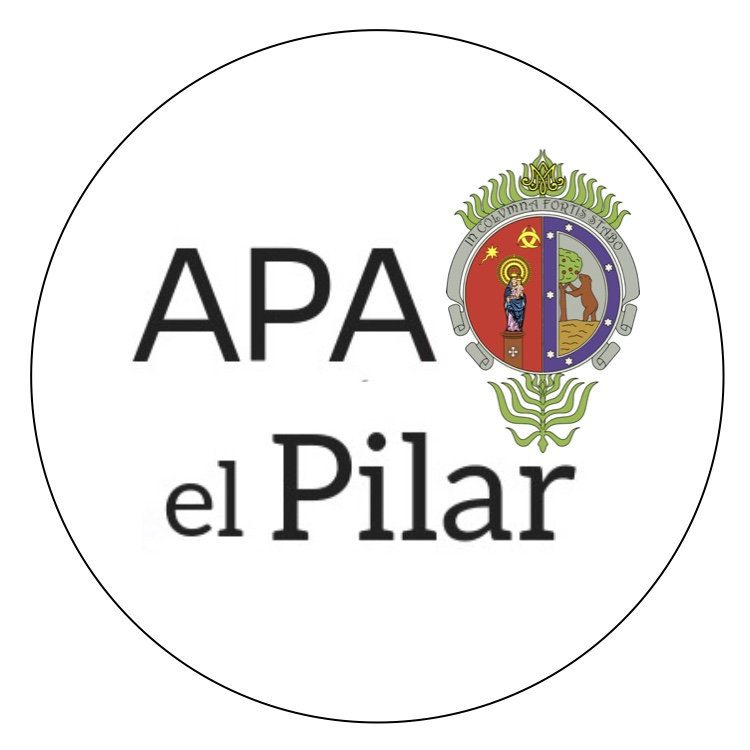 NSPilar_LogoAPA