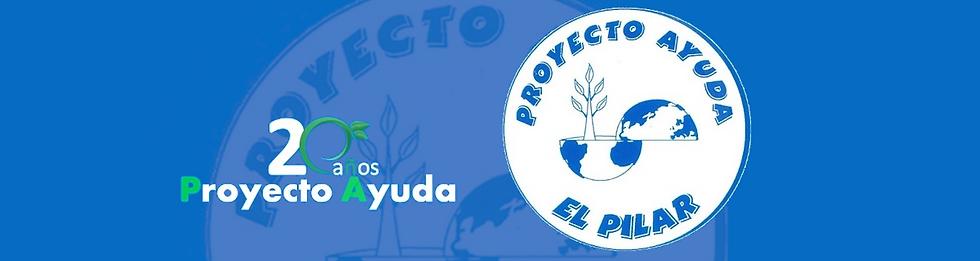 NSPilar_ProyectoAyuda20.png