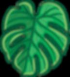 05_leaf_edited.png