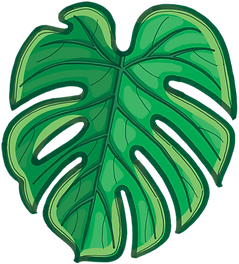 05_leaf_edited.png