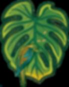 10_leaf_edited.png