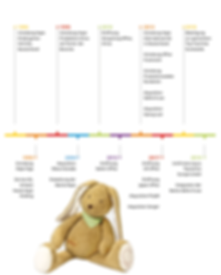 chronologie_toynamics.png