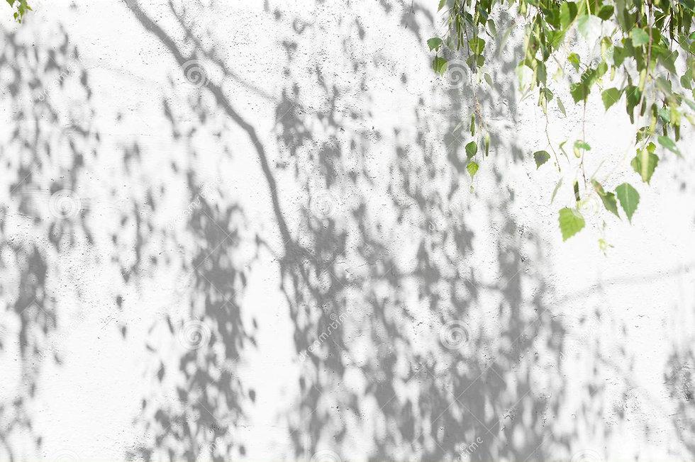 shadow-tree-leafy-crown-wall-leaf-patter
