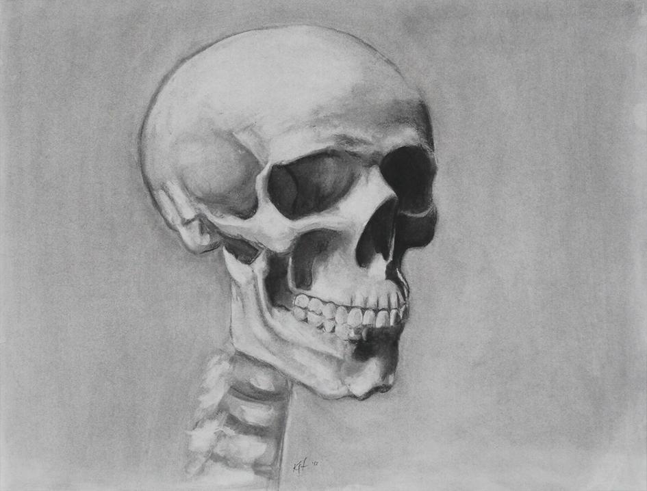 skull_med1_o.jpg