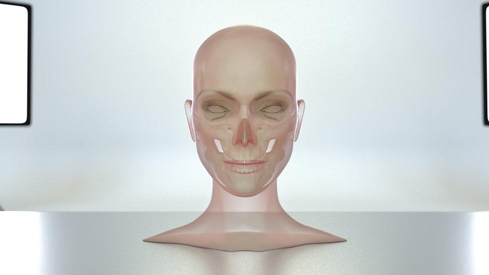 skullface.jpg