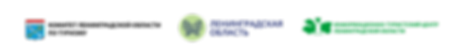 логотипы шапка новый порядок 9.09.png