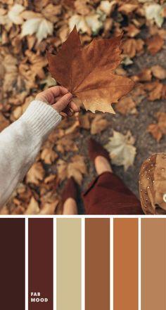 paleta horizontal1.jpg