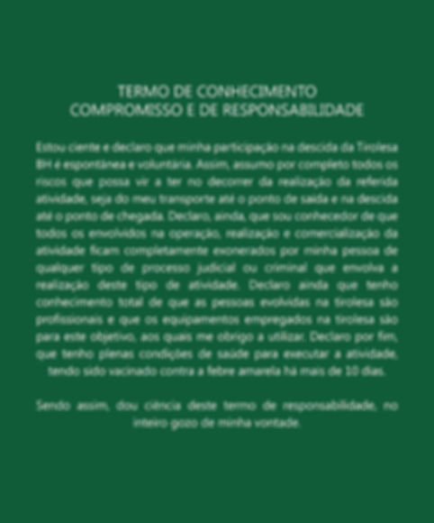 Termo de compromisso2-01.jpg