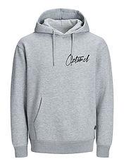 hoodie gris Front AGO2020.jpg